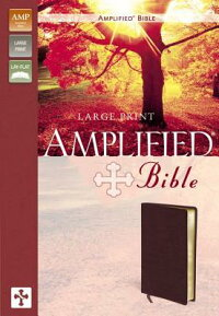 Amplified_Large_Print_Bible-AM