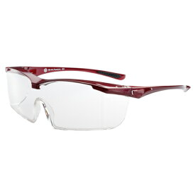 EYE CARE GLASS PREMIUM (保護メガネ) EC-10 Premium RED