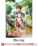 【楽天ブックス限定全巻購入特典】神達に拾われた男 VOL.1【Blu-ray】(オリジナルA3ポスター2枚セット)