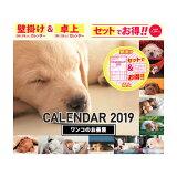 ワンコのお昼寝 W&Dカレンダー(2019) ([PBカレンダー])