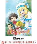 【楽天ブックス限定全巻購入特典】神達に拾われた男 VOL.2【Blu-ray】(オリジナルA3ポスター2枚セット)