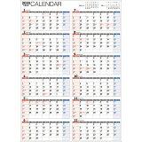 書き込み式1年カレンダー【A2】(2020年) ([カレンダー])