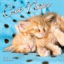 Cat Naps 2018 Mini Calendar