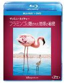 ディズニーネイチャー/フラミンゴに隠された地球の秘密【Blu-ray】