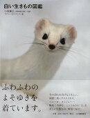 【バーゲン本】白い生きもの図鑑
