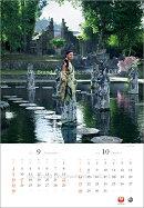 JAL「A WORLD OF BEAUTY」(大型判) 2012 カレンダー