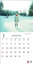 JAL「A WORLD OF BEAUTY」(普通判) 2013 カレンダー