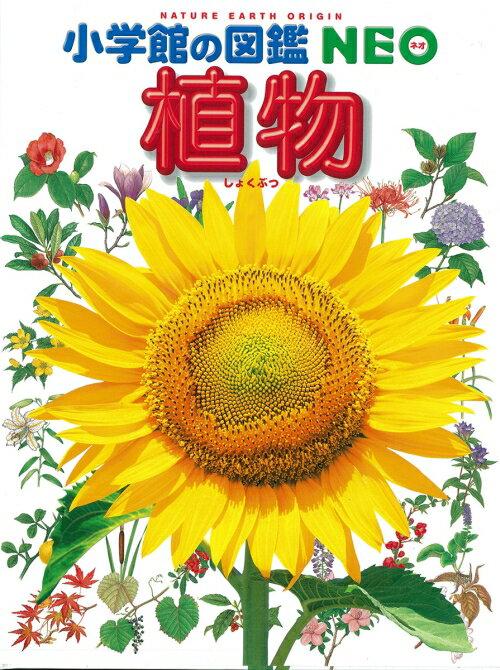 植物2版 (小学館の図鑑NEO) [ 畑中喜秋 ]
