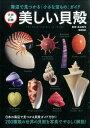 美しい貝殻 海辺で見つかる「小さな宝もの」ガイド (学研の図鑑) [ 奥谷喬司 ]