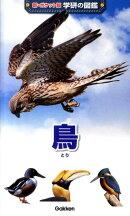 鳥増補改訂版