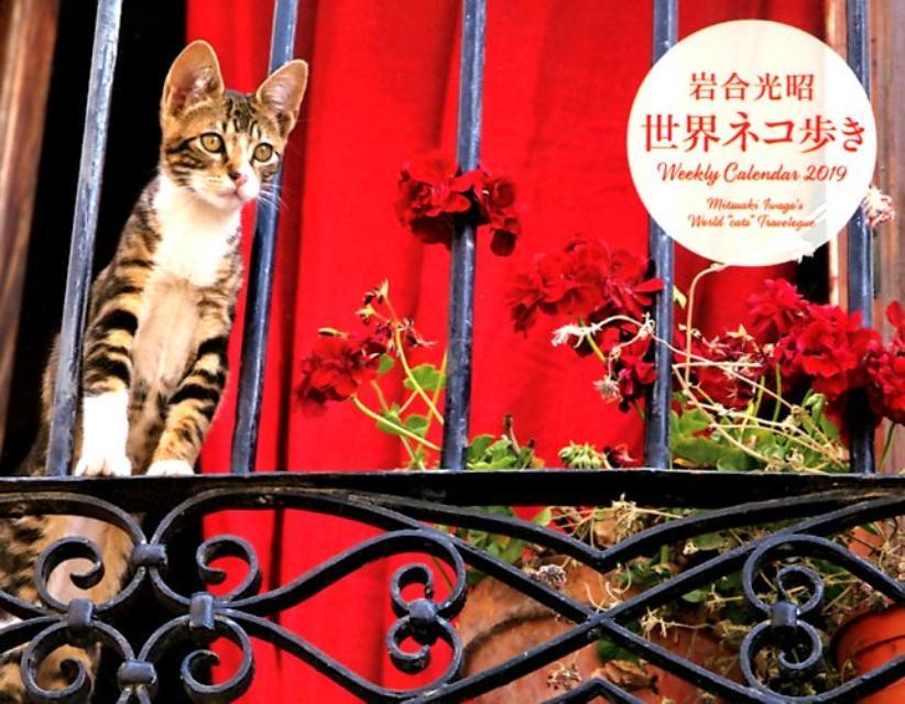 岩合光昭世界ネコ歩きWeekly Calendar(2019) ([カレンダー]) [ 岩合光昭 ]