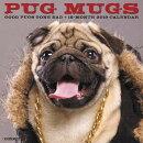 Pug Mugs 2019 Wall Calendar