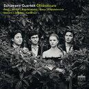 【輸入盤】『キアロスクーロ〜モーツァルト、メンデルスゾーン、ヤナーチェク、フィリップ・グラス、ガーシュウィン…