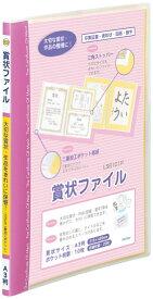 レイメイ藤井 賞状ファイル A3 ピンク LSB101P 賞状ファイル (文具(Stationary))