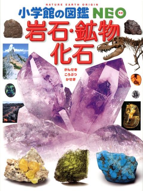 岩石・鉱物・化石 (小学館の図鑑NEO) [ 萩谷宏 ]