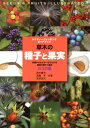 草木の種子と果実 形態や大きさが一目でわかる植物の種子と果実632種 (ネイチャーウォッチングガイドブック) [ 鈴木庸夫 ]