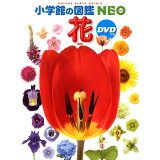 花 (小学館の図鑑NEO)