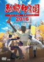 熱闘甲子園 2016 DVD [ (スポーツ) ]