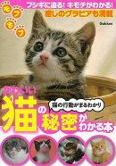 【バーゲン本】かわいい猫の秘密がわかる本