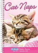 Cat Naps 2018 Engagement Calendar