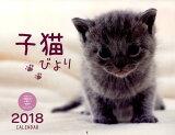 子猫びよりCALENDAR(2018) ([カレンダー])