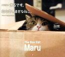 まるです。箱を愛し過ぎなねこ。