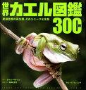 世界カエル図鑑300種 絶滅危機の両生類、そのユニークな生態 [ クリス・マティソン ]