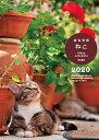 ねこ diary schedule 2020 [ 岩合光昭 ]