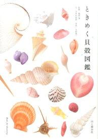 ときめく貝殻図鑑 (Book for discovery) [ 寺本沙也加 ]