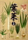 葉菜(3) タマネギ・ネギ・ニンニク・ラッキョウ・ワケギ・リーキ・アサツ (家庭菜園レベルアップ教室)