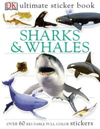 Shark_and_Whale