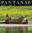PANTANAL パンタナール