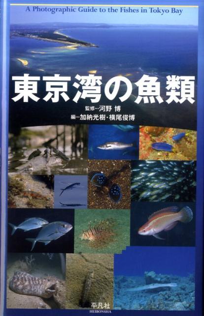 東京湾の魚類 [ 加納光樹 ]