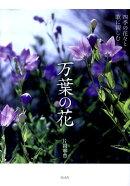 【謝恩価格本】万葉の花