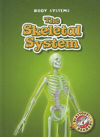 The_Skeletal_System