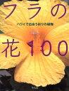 フラの花100 [ 近藤純夫 ]