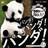 パンダ!パンダ!パンダ!カレンダー(2020) ([カレンダー])