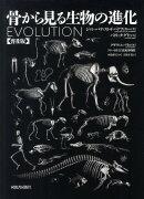 骨から見る生物の進化普及版
