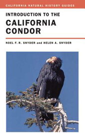 Introduction to the California Condor, Volume 81 INTRO TO THE CALIFORNIA CONDOR (California Natural History Guides) [ Noel Snyder ]