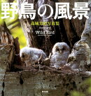 【謝恩価格本】野鳥の風景