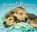 Pooped Puppies 2018 Daily Calendar