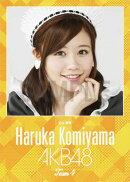 (卓上) 込山榛香 2016 AKB48 カレンダー【生写真(2種類のうち1種をランダム封入)】【楽天ブックス独占販売】