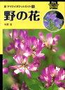 野の花 [ 木原浩 ]