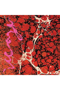 【輸入盤】Beyondless[Iceage]