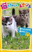 猫たちからのプレゼント(捨てネコたちを助けたい!)