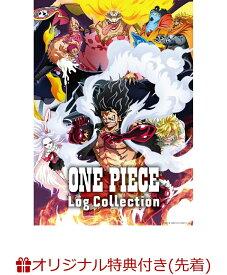 """【楽天ブックス限定先着特典+先着特典】ONE PIECE Log Collection """"LEVELY""""(2L判ブロマイド2枚セット+オリジナル両面A4クリアファイル)"""