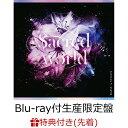 【先着特典】Sacred world【Blu-ray付生産限定盤】 (L判ブロマイド) [ RAISE A SUILEN ]