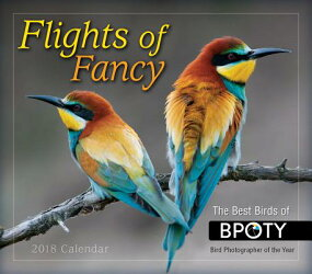 Flights of Fancy 2018 Daily Calendar