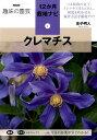 クレマチス (NHK趣味の園芸12か月栽培ナビ) [ 金子明人 ]