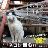 必死すぎるネコ~前後不覚篇~ (TATSUMI MOOK)
